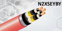 N2XSEYBY