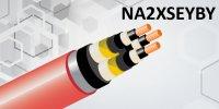 NA2XSEYBY